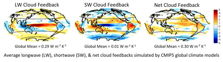 Average longwave (LW), shortwave (SW), and net cloud feedbacks as simulated by global climate models